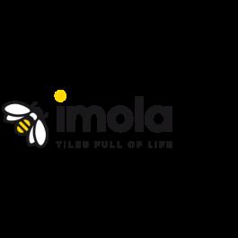 Imola Arkim